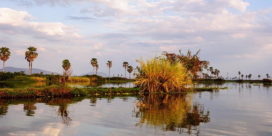 African scenery on Lake Manze ,Selous