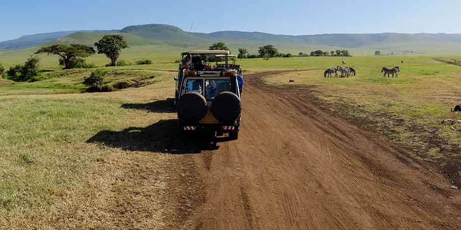 Safari-Ngorongoro-Cratère