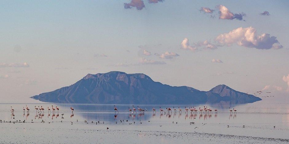 Lac Natron En Tanzanie