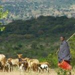 Ethnies en Tanzanie