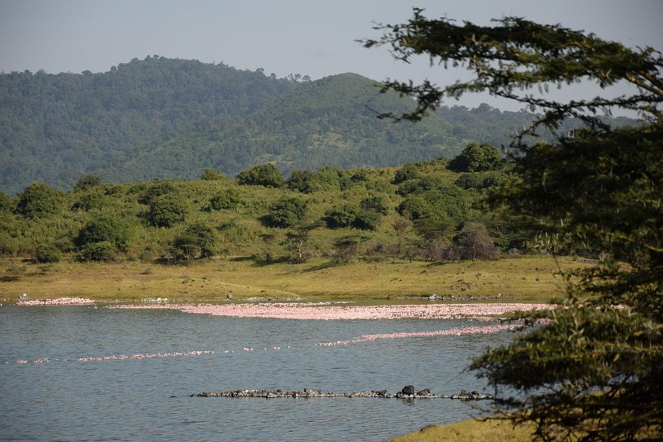 La beauté d'Arusha en une image